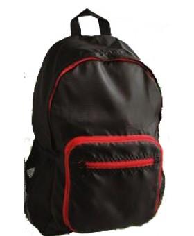 Foldable Bag 2